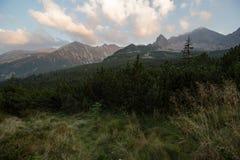 Sunny day high in mountains. Sunny day high in Tatra Mountains (Tatry), Zakopane, Poland royalty free stock photos