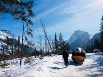 Sunny day in High Tatras Royalty Free Stock Photo