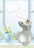 Sunny day a hippopotamus and chamomiles Stock Images
