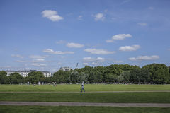 Sunny day in Hyde Park. This image shows some meadows in the Hyde Park and a big stretch of a blue sky. It was taken on a sunny day in August 2017 Royalty Free Stock Images
