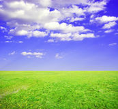 Sunny day with landscape. And  green grassland Royalty Free Stock Images