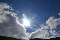 Sunny day royalty free stock image