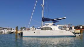Sunny day miami city tourist boar ride privat yacht dock 4k florida usa stock video