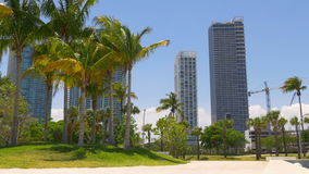Sunny day miami downtown museum palm bay park panorama 4k florida usa. Usa sunny day miami downtown museum palm bay park panorama 4k florida stock footage