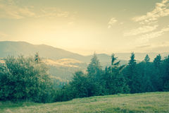 Sunny day is in mountain landscape - vintage style Stock Images
