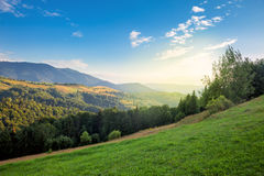 Sunny day in The Mountain Valley Stock Images