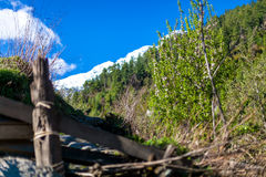 Sunny Day Mountains Nature Morning Under Hill Viewpoint.Mountain Trekking Landscape. Nobody photo. Horizontal picture Stock Image