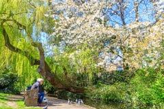 Sunny Day na caminhada nova do rio de Londres, Canonbury Imagem de Stock Royalty Free