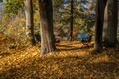 Autumn in Norrköping, Sweden stock images