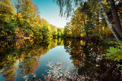 Sunny day in outdoor park with autumn trees reflection Royalty Free Stock Image