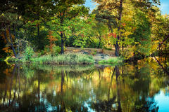Sunny day in outdoor park with autumn trees reflection Royalty Free Stock Images