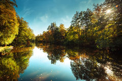 Sunny day in outdoor park with autumn trees reflection stock image