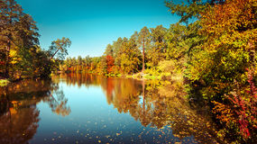 Sunny day in outdoor park with colorful autumn trees Royalty Free Stock Photography
