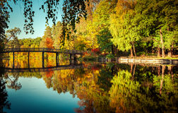 Sunny day in outdoor park with colorful autumn trees Royalty Free Stock Images