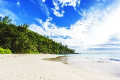 Sunny day on paradise beach anse georgette,praslin seychelles 5. Sunny day on paradise beach with big granite rocks, turquoise water, white sand and palm trees Royalty Free Stock Images