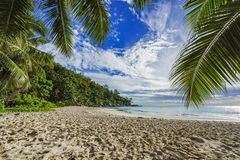 Sunny day on paradise beach anse georgette,praslin seychelles 3. Sunny day on paradise beach with big granite rocks, turquoise water, white sand and palm trees Stock Images