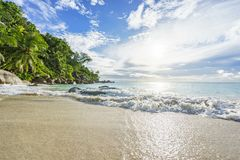 Sunny day on paradise beach anse georgette,praslin seychelles 46 Stock Photography