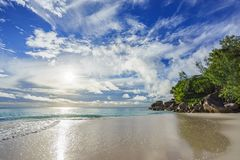 Sunny day on paradise beach anse georgette,praslin seychelles 55 Royalty Free Stock Photo