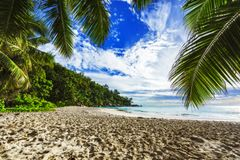 Sunny day on paradise beach anse georgette,praslin seychelles 3. Sunny day on paradise beach with big granite rocks, turquoise water, white sand and palm trees Stock Photography