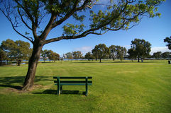 Sunny day in Perth. Green grass and blue sky under a sunny day in Perth Western Australia Stock Photography