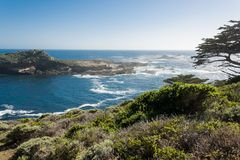 Point Lobos. Sunny day at Point Lobos, California Stock Images