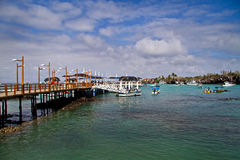 Sunny day in the port of beautiful Santa Cruz Stock Photography