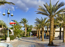 Sunny day on promenade of Eilat city, Israel Royalty Free Stock Image