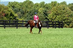 Sunny Day Ride in Middle Tennessee. Equestrian Horse ranches are very poplar  in Middle Tennessee.  The term Equestrian refers to the skill of riding, driving Royalty Free Stock Photography