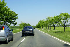 Sunny day road. Green trees and fields Royalty Free Stock Photos