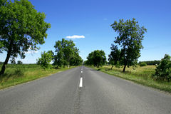 Sunny day road. Green trees and fields Stock Image
