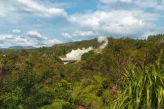 Geothermal Park in Rotorua stock photography