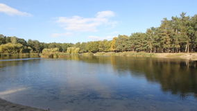 Sunny day at the sand beach near the lake at the park. Panoramic view of a quiet lake at the park from the sand beach. Small lake close to the forest stock footage