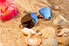 Sunny day at sea. Beach and sand royalty free stock images