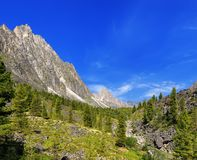 Sunny day in a Siberian mountain valley Stock Photo