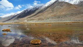 Sunny day with snow mountain and lake of clear water in Ladakh stock video