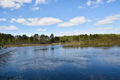 Sunny day at the spring river. Stock Image
