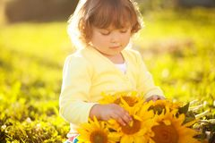 Happy child with bouquet of beautiful sunflowers. Sunny day, summer vacation. cute little girl with yellow sunflowers, outdoor portrait stock photos