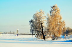 Sunny day. There came frosty morning in steppes of Altai Stock Photos
