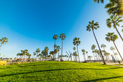 Sunny day in Venice beach Stock Images
