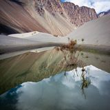 Sunny day view at Nubra Valley desert Stock Photography