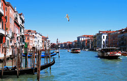 Sunny day view over the channel in Venice Royalty Free Stock Images