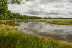 A Sunny Day in the Wetlands. A sunny day with clouds reflecting on the water in the wetlands an Nygren Wetlands near Rockton, Illinois stock photos