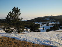 Sunny day. The winter sunny day in Crimea mountains Royalty Free Stock Photo