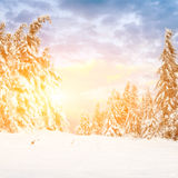 Sunny day in winter mountains Stock Photography
