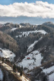 Sunny day of a winter, on wild transylvania hills with Bucegi mountains in background Royalty Free Stock Photography