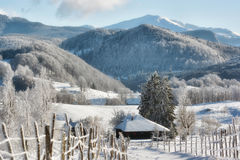 Sunny day of a winter, on wild Transylvania hills. Romania. Low key, dark background, spot lighting, and rich Old Masters Royalty Free Stock Photography