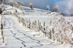 Sunny day of a winter, on wild Transylvania hills. Stock Image