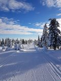 Sunny day in a winter wonderland. amazing landscape. Sunny day in winter wonderland hedmark norway. nice forest and a great sky stock photos