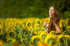 Sunny day woman in the field. Royalty Free Stock Photos