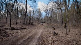 Sunny day in the wood. Two riders on quadrocycle in the autumn forest. Men ride on quad bikes on forest roads.